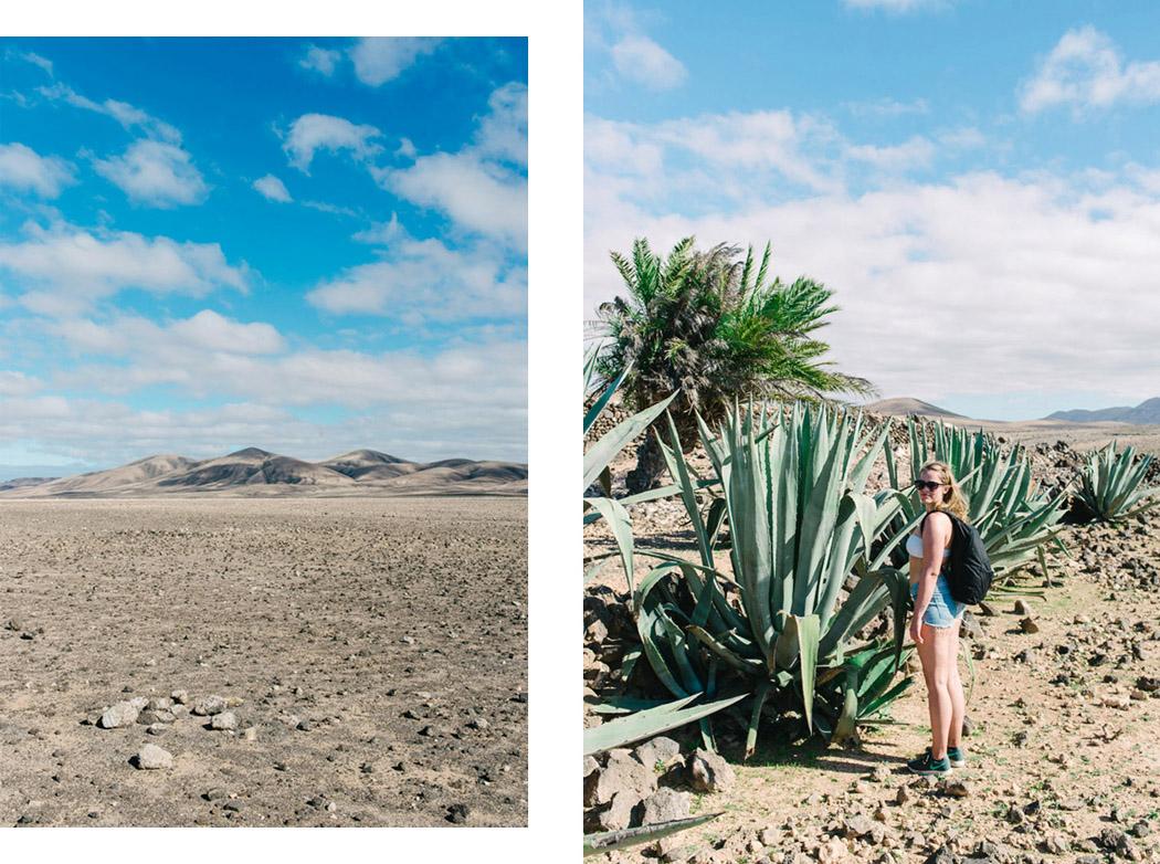 003-imgegenteil_BockAufReisen_Fuerteventura