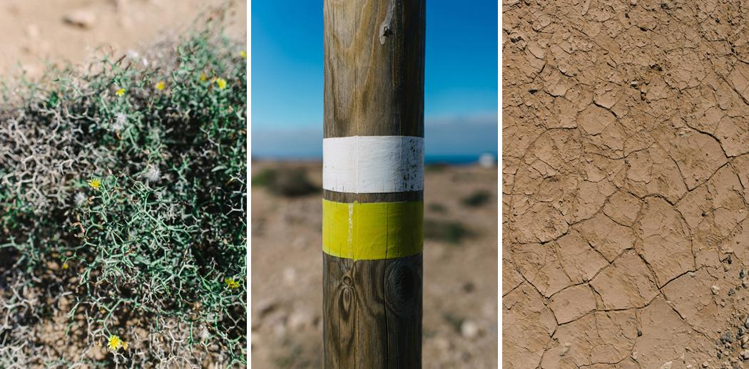 085-imgegenteil_BockAufReisen_Fuerteventura