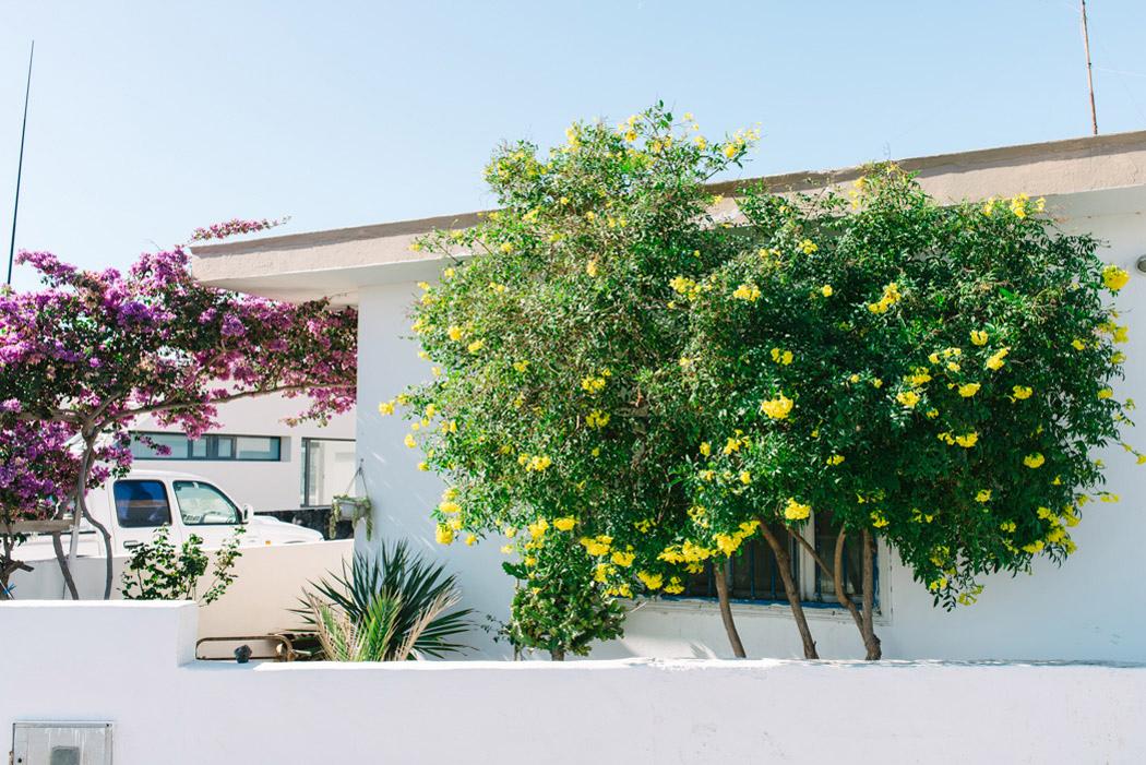 165-imgegenteil_BockAufReisen_Fuerteventura